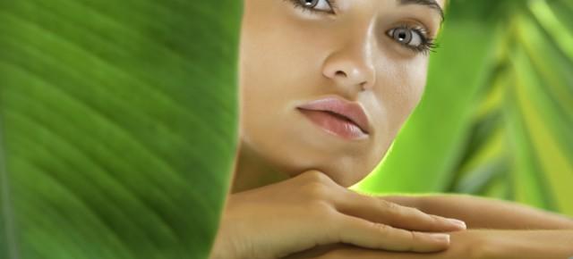 Produit bio & cosmétique bio